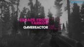 Gevärsmys och tårgas i Escape From Tarkov