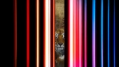 Tiger King 2 - Official Trailer