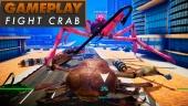 GRTV slåss med kräftdjur i Fight Crab
