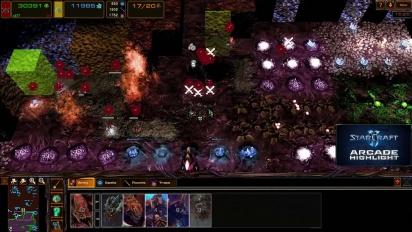 Starcraft II: Heart of the Swarm  - Arcade Highlight: Hive Keeper