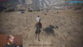 Vi spelar Wild West Online så svetten lackar